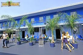 banana bungalow hollywood hostel management