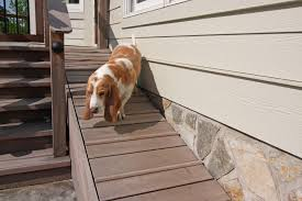better than a dog run u2014 yard ideas for your four legged family member