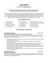 professional resume template 2013 business resume examples 2013 best writing images on student