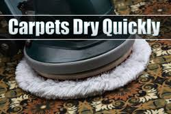 carpet cleaning denton tx kiwiservices com