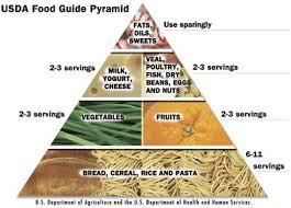 food pyramid usda food guide pyramid