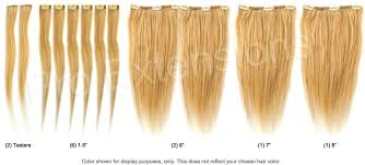 1 inch of hair 14 inch clip on hair extensions