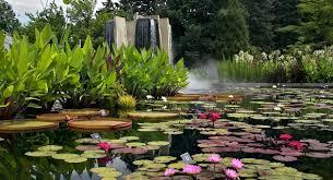 Botanical Gardens Images by Water Gardens Denver Botanic Gardens