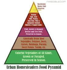 the urban homesteader food pyramid northwest edible life