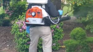 mosquito control by pennygreen take your yard back youtube