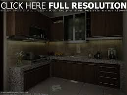 Interior Design Home Remodeling Small Kitchen Design Dgmagnets Com