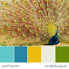 best 25 peacock color scheme ideas on pinterest peacock bedroom