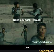 Mmm Whatcha Say Meme - the maze runner pictures and memes don t look back wattpad