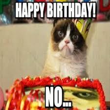 Grumpy Cat Birthday Memes - 58 grumpy cat birthday wishes