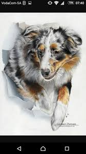 affenpinscher webster s 47 best dog portraits i did images on pinterest dog portraits