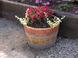 Half Barrel Planters by French Oak Wine Barrel Planters U2022 Celtic Timber