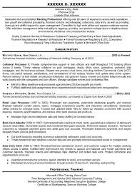 Sample Resume It Professional by Professionally Written Resume