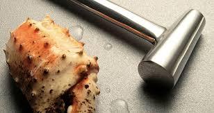 marteau cuisine marteau dans la cuisine