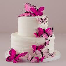 butterfly cake beautiful butterfly cake ornament sets pink southern cross beauty