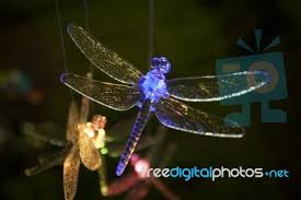 glass dragonfly ornament stock photo royalty free image id 100131354