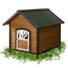 dog barn pet squeak barn dog house hayneedle