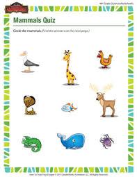 mammals quiz u2013 4th grade science worksheets free u2013 of dragons