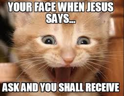 Jesus Cat Meme - meme creator happy cat meme generator at memecreator org