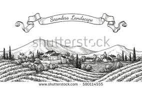 vineyard seamless landscape vine sketch isolated stock vector