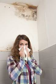 how to get rid of musty smell in furniture how to get rid of musty smell odorklenz is committed to providing