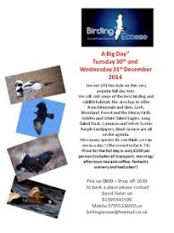 blog u2013 2014 u2014 birding ecosse