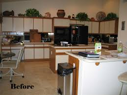 Home Decor Before And After Photos Refinish Kitchen Cabinets Before And After Alkamedia Com