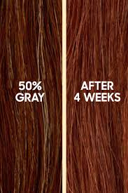 Color Eazy Hair Dye Review Best At Home Hair Color Top Box Hair Dye Brands
