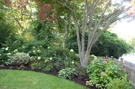 Front Yard Tree Landscaping Ideas Tree Planting Ideas Landscape Traditional With Front Yard Turf