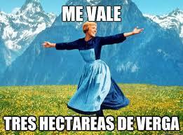 Memes De Me Vale - me vale tres hectareas de verga sound of music election quickmeme