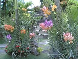 mga hardinerong tahor na mahilig sa orchids euphorbia ornamental