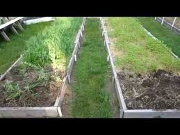 cover crops in raised bed vegetable gardens youtube