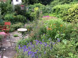 london cottage garden gardening blog