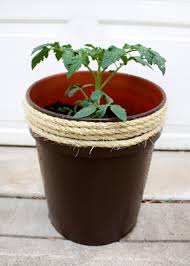 how to make a planter from a 5 gallon bucket u2014 tag u0026 tibby