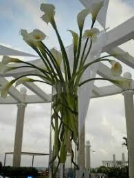 Flower Centerpieces For Wedding 4 Beach Wedding Flower Mistakes To Avoid Destination Wedding Details