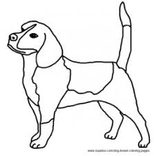 realistic beagle coloring pages