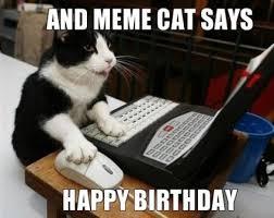 Cat Pictures Meme - funny happy birthday cat meme 2happybirthday