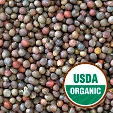 organic seeds sun organic farm