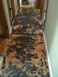 lovable hardwood floor repair water damage repairing and restoring