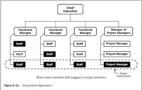 functional managers tulisan softskill gundarma chapter 2 the project management context