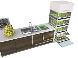 kitchen nano garden small garden ideas