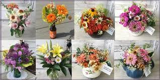 Fresh Cut Flowers Local Pickup Of Fresh Cut Herbs And Flowers U2013 Sunnybrook Gardens Ltd