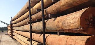ace pole company southern yellow pine utility polesace pole company