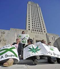 louisiana house panel takes first step toward medical marijuana