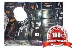 0822 2626 4884 penjual minyak lintah papua hitam
