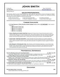 it professional resume template sle professional resume professional resume sles free