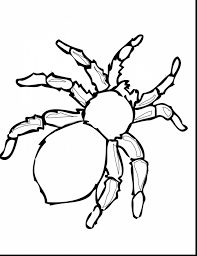 Halloween Printable Coloring Pages Awesome Printable Spider Coloring Pages With Halloween Printable