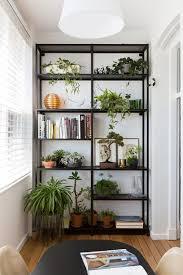 How To Decorate A Bookcase Black Shelves Ideas Plants Plant Shelves And Shelves