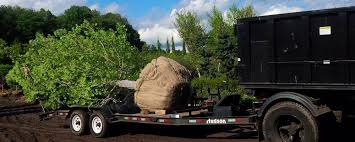 Landscaping Companies In Ct by Landscaping Tree Removal U0026 Excavation Services In Fairfield Ct