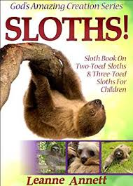 4 toed sloth sloths sloth book on two toed sloths three toed sloths for