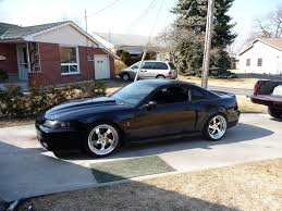Black 2003 Mustang 99 04 Saleen Mustang Cobra Wing Or Saleen Wing Mustangs